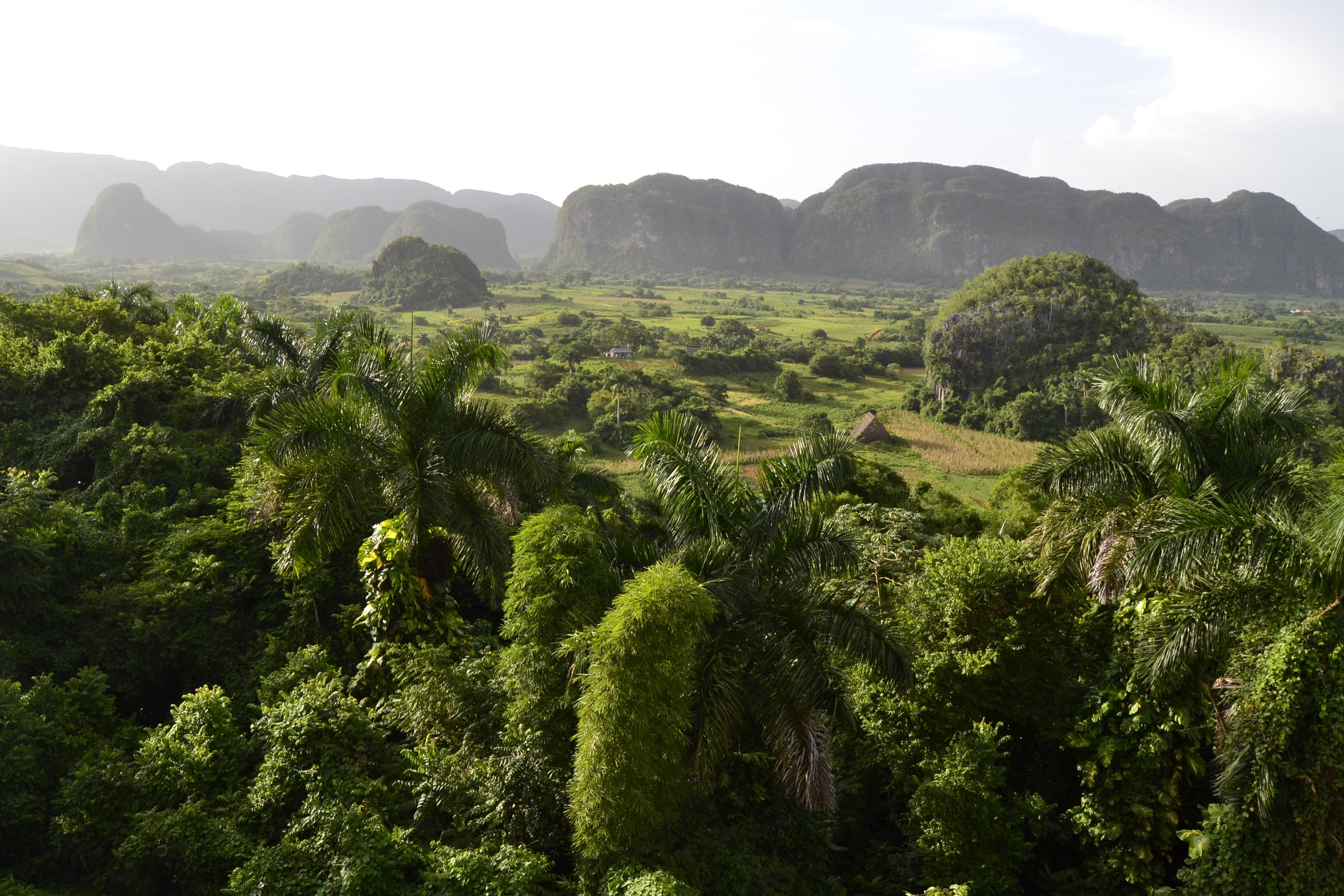 El Valle de Viñales desde la terrzada del hotel Jazmín