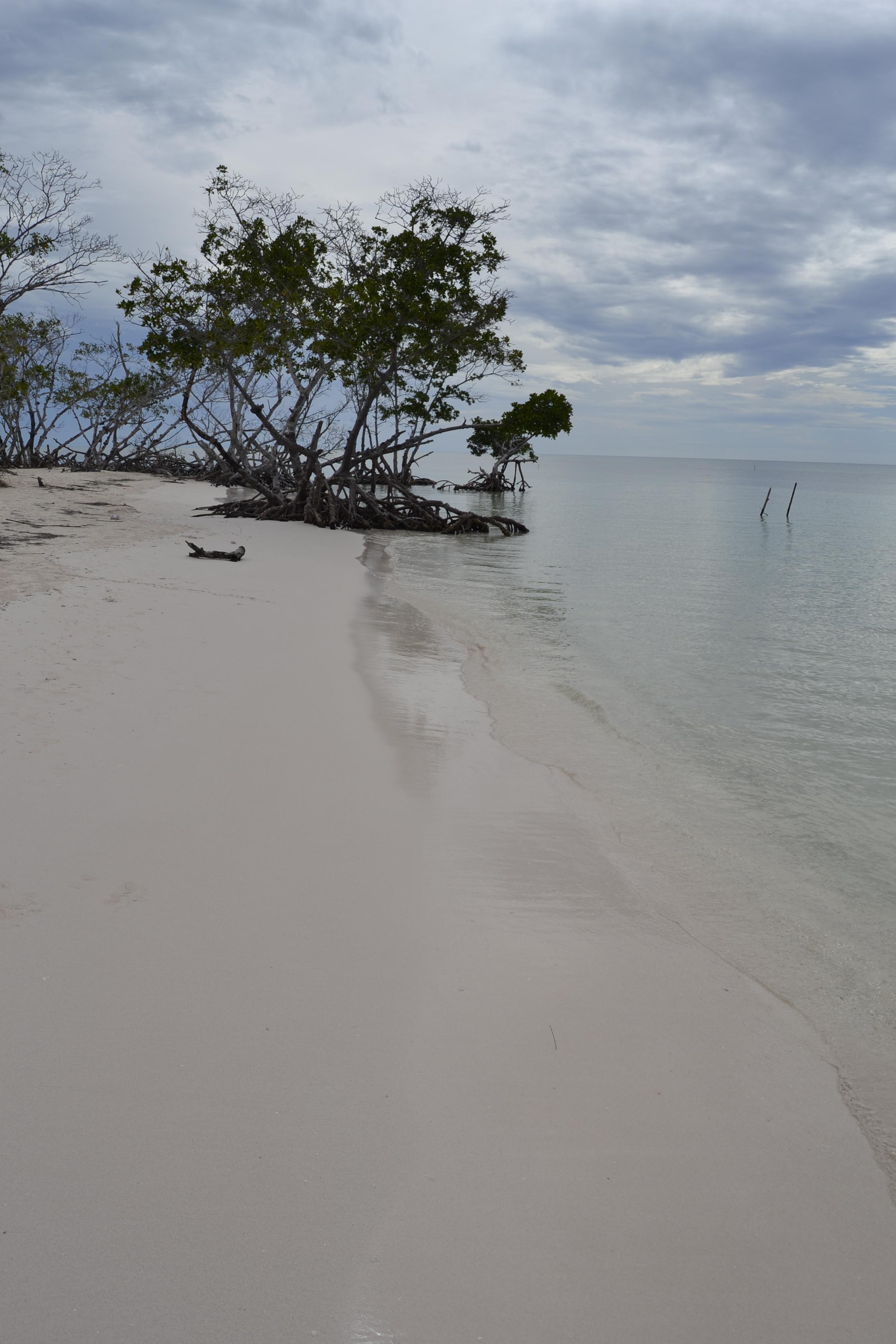 Playa solitaria en Cayo Jutías