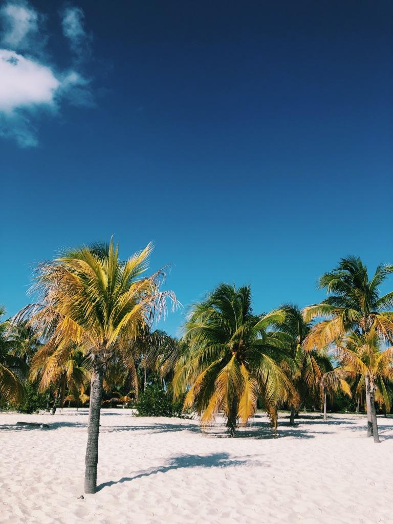 Paraíso caribeño